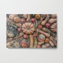 Pumpkins on hay Metal Print