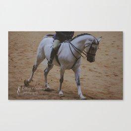 Cantering Grey Horse Canvas Print