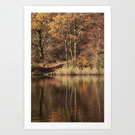 Golden Pond - 1 Art Print