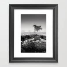 Tree in Marshland - Black and White Collection Framed Art Print