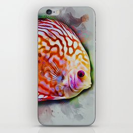 Discus Fish iPhone Skin