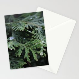 Evergreen 2 Stationery Cards