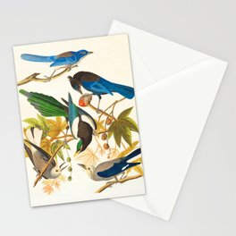 Vintage Birds Print Stationery Cards