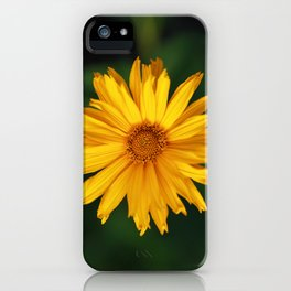 Maximilian Sunflower iPhone Case