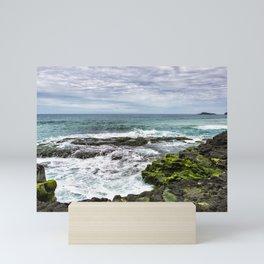 View From Secret Beach Mini Art Print