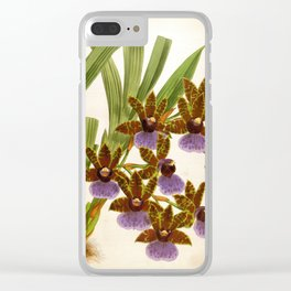 Zygopetalum Gautieri Vintage Lindenia Orchid Clear iPhone Case