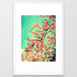 vintage Cherry blossoms  Framed Art Print