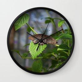 The Grasp Wall Clock