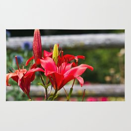 Red Lilies Rug