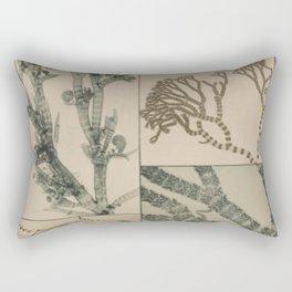 Patterns In Nature Rectangular Pillow