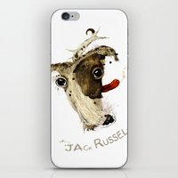 jack russell iPhone & iPod Skins featuring Jack Russell by Ariadna