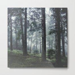 Path Vibes Metal Print