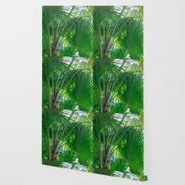Sunny Tropical Palms 1 Wallpaper