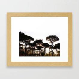 Pineland Framed Art Print