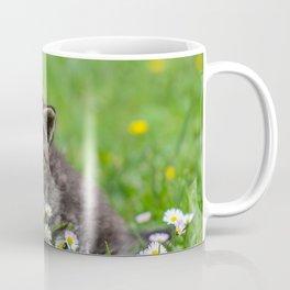 Kitty looking at flowers Coffee Mug