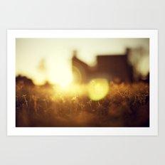 A Flare of Sun Art Print