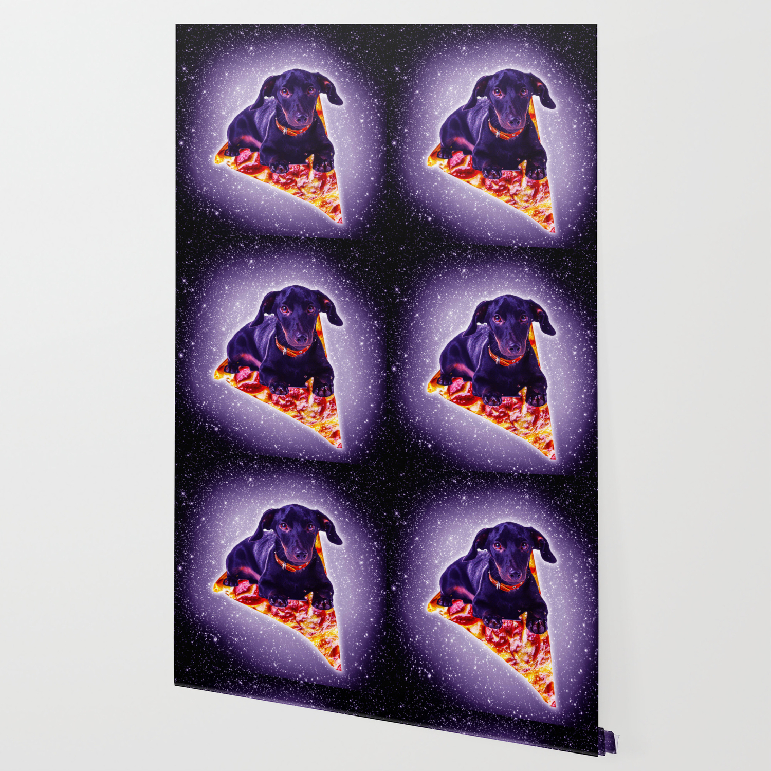 outer space galaxy dog riding pizza wallpaper