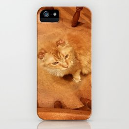 Cat-ouflage iPhone Case