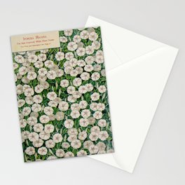 Seed Catalog Garden Floral Fruit Ipomoea Maxima Stationery Cards