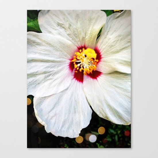 Summer showers brings pretty flowers Canvas Print