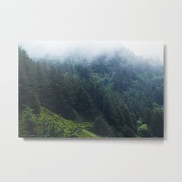 Oregon forest, foggy forest, oregon coast, green forest, nature, moody forest, moody landscape Metal Print