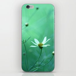 Sway iPhone Skin