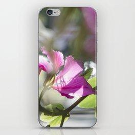 Translucid Turmoil iPhone Skin