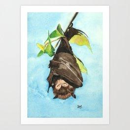 Sleepy Fruit Bat Art Print