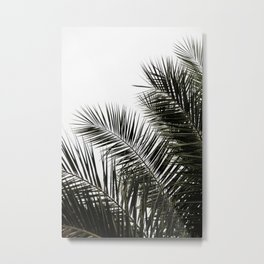 Palm Leaves 3 Metal Print