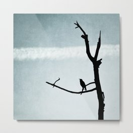 Le petit Oiseau Metal Print