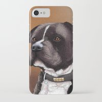 bull terrier iPhone & iPod Cases featuring Staffordshire bull terrier 2 by Carl Conway