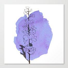 delphinium Canvas Print