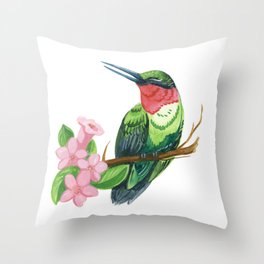 Summer Hummingbird Throw Pillow