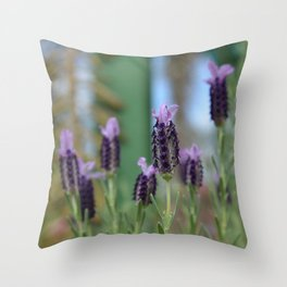 Lavender 3..... Throw Pillow