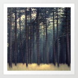 Rays of light... Art Print