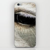 lama iPhone & iPod Skins featuring Lama by Design Windmill