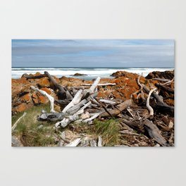Desolate Shore Canvas Print