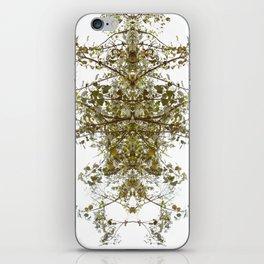 Mirrored Trees 6 iPhone Skin