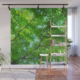 Canopy of Green, Leafy Branches with Blue Sky Wall Mural