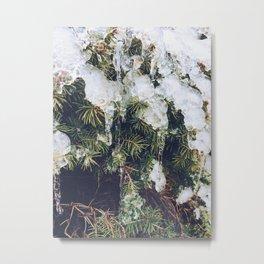 Tree in ice Metal Print