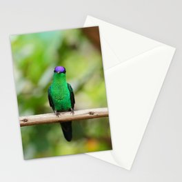 Violetcapped Woodnymph Hummingbird Stationery Cards