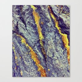 Golden Sap Canvas Print