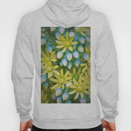 Yellow Flowers by Reay of Light Photography Hoody