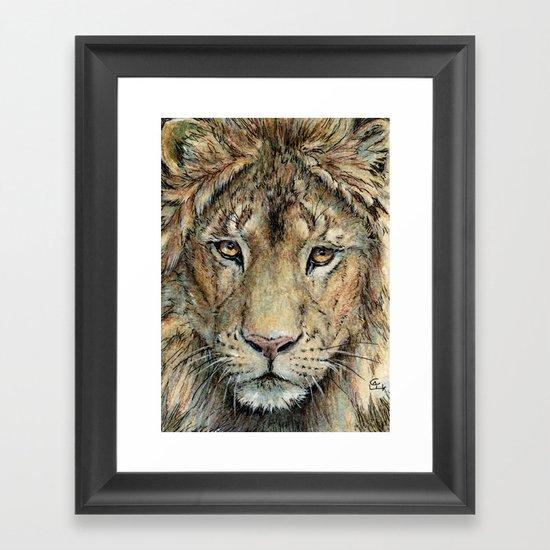 Lion 325 Framed Art Print
