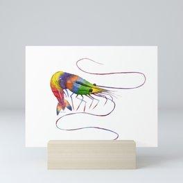 Colorful Shrimp Mini Art Print