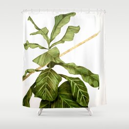 And & And Shower Curtain