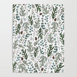 Pine and Eucalyptus Greenery Poster