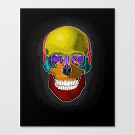 Skull Anatomy Canvas Print