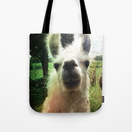 Blanche nose kiss Tote Bag