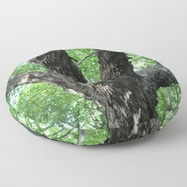 Tree Trunk and Branches Floor Pillow